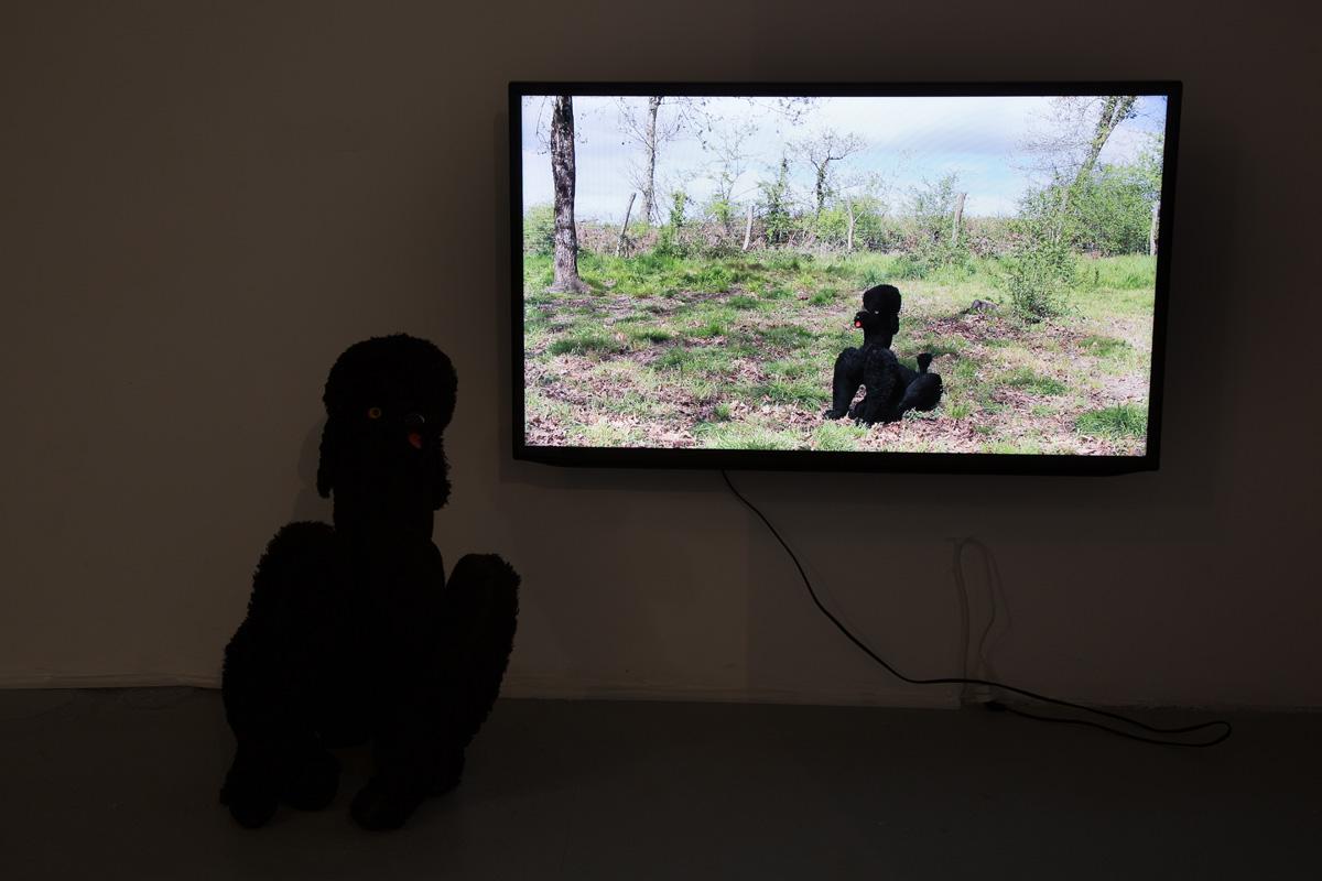 Julie Chaffort, artiste accueillie en résidence au printemps 2015, pollen