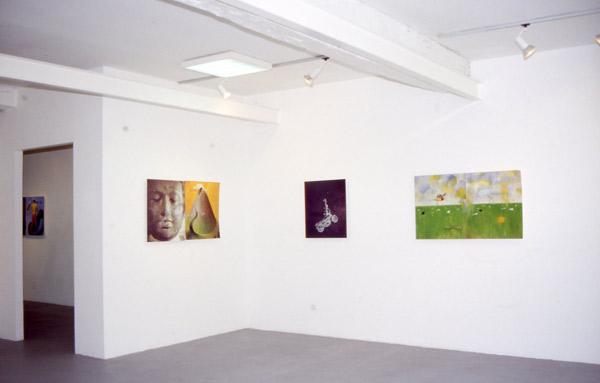 Lile de Ronald Curchod, exposition à Pollen 2002