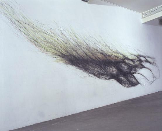 Mélanie Berger, exposition à Pollen, 2007