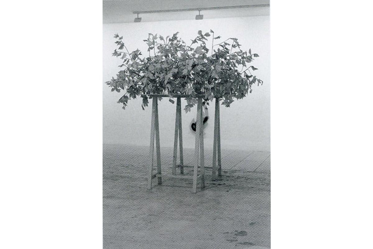 Virginie Delannoy, artiste en résidence, 1997